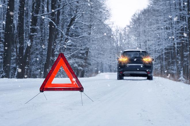 2019 Auto Bild Kış Lastiği Testi 225/45 R17 3