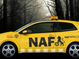 2019 NAF Yaz Lastiği Testi 205/55 R16 11